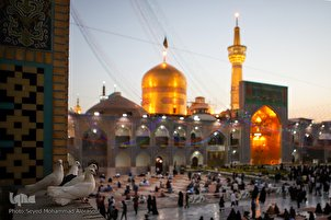 Imam Reza (AS) Mausoleum Decorated on Birthday of 8th Imam